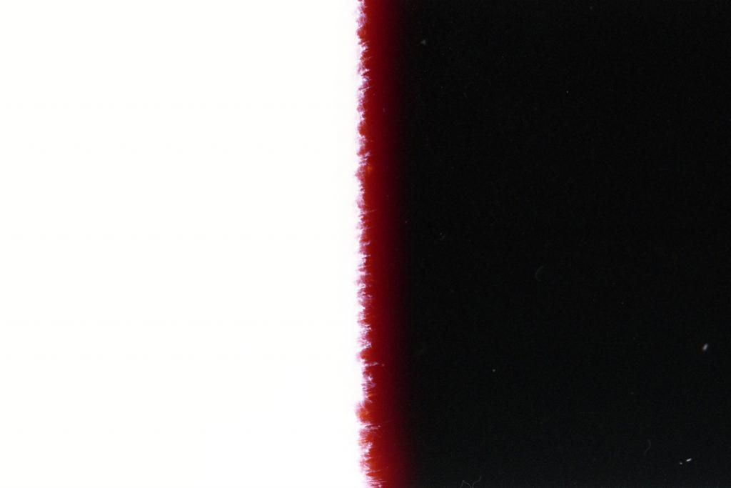 blaz janezic film_2